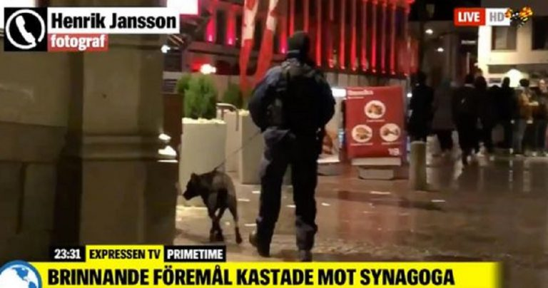 20 masked men attack Gothenburg Synagogue with firebombs